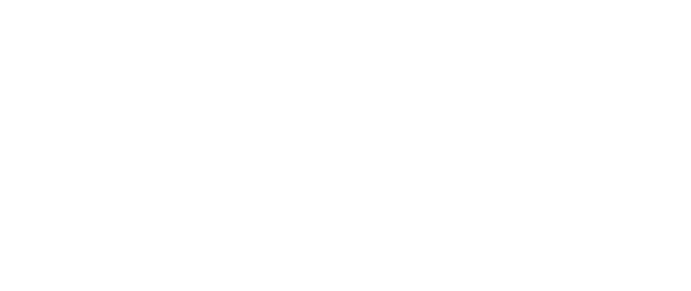 WAS Agency